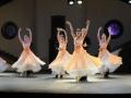 Madia_WALZERWUNDERBAR_Wiener Ballett_598