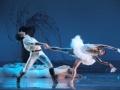 Madia_SWAN-LAKE_Teatr-Wielki_01