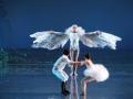 Madia_SWAN-LAKE_Teatr-Wielki_04