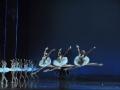 Madia_SWAN-LAKE_Teatr-Wielki_18