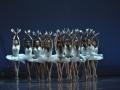 Madia_SWAN-LAKE_Teatr-Wielki_19