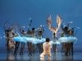 Madia_SWAN-LAKE_Teatr-Wielki_Michal_Matuszak_02