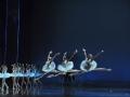 Madia_SWAN-LAKE_Teatr-Wielki_Michal_Matuszak_18